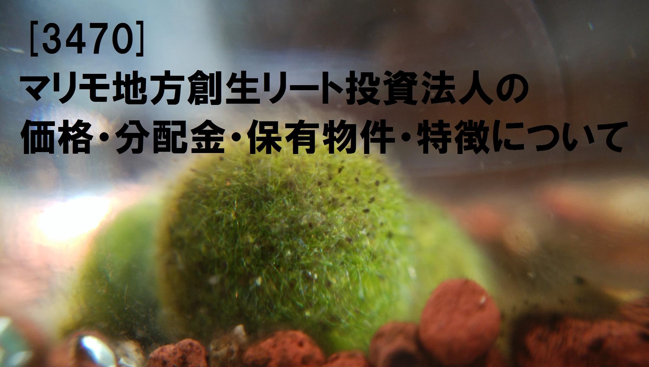 [3470]マリモ地方創生リート投資法人の価格・分配金・保有物件・特徴について